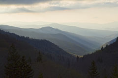 Great Smokey Mountains National Park Royalty Free Stock Photo