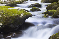 Great Smokey Mountains National Park Stock Photography