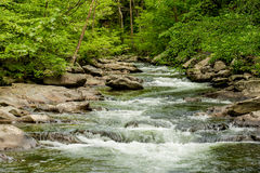 Free Great Smoky Mountain National Park Royalty Free Stock Photo - 78119745