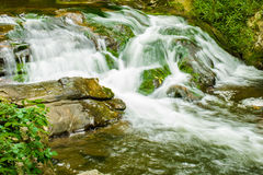 Great Smoky Mountain National Park mountain stream Stock Photos