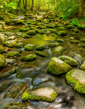Great Smoky Mountain National Park stream Royalty Free Stock Photography