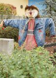 Halloween straw character scarecrows. Great Smoky Mountain National Park. Tennessee USA. Halloween Season with scarecrows Royalty Free Stock Images