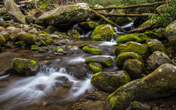Great Smoky Mountain Stream Royalty Free Stock Photography