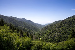 The Great Smoky Mountains Royalty Free Stock Image