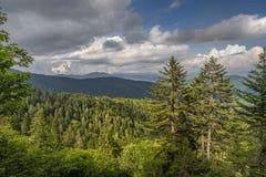 Great Smoky Mountains dans la chaîne appalachienne Images libres de droits