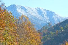 Great Smoky Mountains in fall colors. Stock Photography