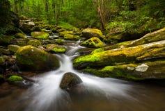 Great Smoky Mountains Gatlingburg Tennessee Sceniczny Naturalny Przewyższa zdjęcie royalty free