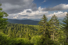 Great Smoky Mountains i den Appalachian kedjan Royaltyfria Bilder