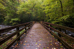 Free Great Smoky Mountains National Park Stock Photo - 13399950