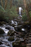 Great Smoky Mountains National Park. Grotto Falls Royalty Free Stock Photo