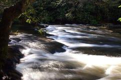 Great Smoky Mountains National Park. Abrams Falls Stock Image