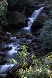 Great Smoky Mountains National Park. Grotto Falls Stock Photos