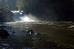 Great Smoky Mountains National Park. Abrams Falls stock photography