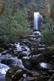 Great Smoky Mountains National Park. Grotto Falls royalty free stock images