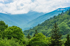 Great Smoky Mountains National Park. Royalty Free Stock Photography