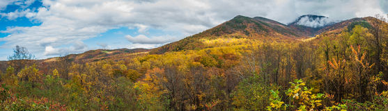 Great Smoky Mountains National  Park  in the Fall Autumn Season Royalty Free Stock Photography