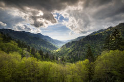 Great Smoky Mountains National Park Gatlinburg TN royalty free stock photos