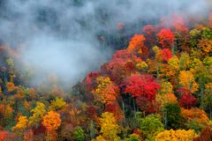 Great Smoky Mountains National Park in October. Great Smoky National Park in peak autumn color Stock Photos