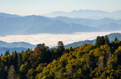 Great Smoky Mountains National Park Royalty Free Stock Photography
