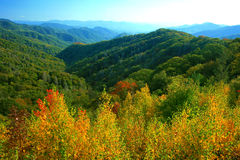 Great Smoky Mountains nationalpark Arkivbild