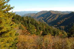 Great Smoky Mountains NP. View from Newfounf Gap Road Stock Photography