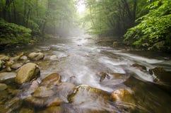Great Smoky Mountains TN Mała Gołębia rzeka Zdjęcia Stock