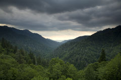 Great Smoky Mtns from Newfound Gap Rd. Scenic Great Smoky Mtns from Newfound Gap Rd royalty free stock image