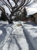 Great snow shoveling in residential neighborhood. Royalty Free Stock Image