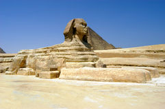 Great sphinx in Cairo. Great sphinx in front of pyramids, Giza, Cairo, Egypt Royalty Free Stock Images
