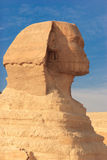 Great Sphinx of Giza Royalty Free Stock Images