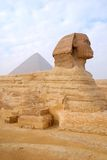 The Great Sphinx of Giza. In Cairo - Egypt Royalty Free Stock Photos