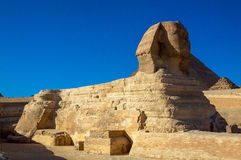 The Great Sphinx of Giza, Cairo, Egypt. This is a picture of the Great Sphinx of Giza, Cairo, Egypt Royalty Free Stock Photos