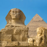 Greate Sphinx. The Great Sphinx of Giza in Egypt royalty free stock photography