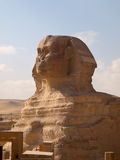 Greate Sphinx. The Great Sphinx of Giza in Egypt royalty free stock photos