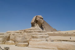 Great Sphinx of Giza. Egypt Royalty Free Stock Photos