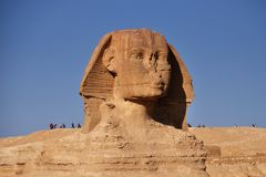 Great Sphinx of Giza. In Egypt royalty free stock image