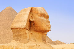Great Sphinx of Giza and Pyramid. Cairo Stock Photos