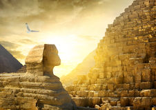 Great sphinx and pyramids Royalty Free Stock Photography