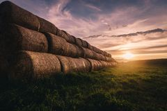Big stacks of hay on a field. Great stacks of hay captured during sunset stock photos