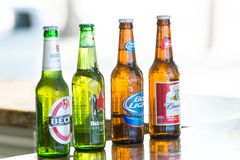 Great stirrup cay, Bahamas - January 08, 2016: beer in glass bottles on bar counter. Alcohol, bad habits. Refreshment, drink, beve. Rage. Beer party, celebration royalty free stock photos