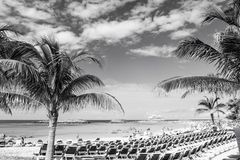 Great stirrup cay, Bahamas - January 08, 2016: sea beach, people, chairs, green palm trees on sunny day. Summer vacation. Holidays, relax. Wanderlust travel royalty free stock images
