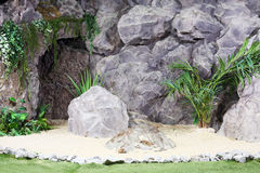 Great stones, sand, palm trees and other plants Stock Image