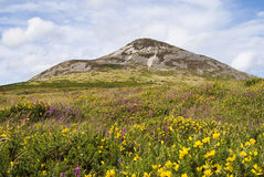 Great Sugar Loaf - Co. Wicklow Ireland Stock Photography