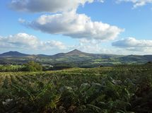 Great Sugar Loaf Mountain, County Wicklow, Ireland Royalty Free Stock Photo