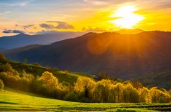 Great sunset in Carpathian mountains. Beautiful springtime landscape. forest on grassy hills back lit. abandoned woodshed in shade behind the forest royalty free stock image