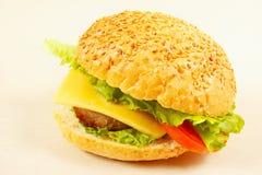 Great tasty hamburger with cheese closeup Royalty Free Stock Photography