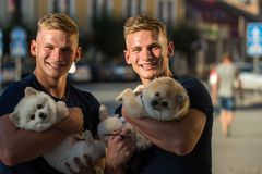 So great to be together. Happy twins with muscular look. Spitz dogs love the company of their family. Twins men hold. Pedigree dogs. Muscular men with dog pets stock photo