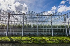 Tomato Greenhouse Harmelen with Clouds. Great tomato nursery and greenhouse in Harmelen with summer sky Stock Photo