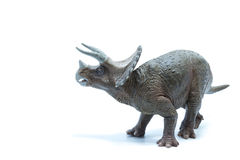 Great Triceratops dinosaurs toy  on white background - s Royalty Free Stock Photography