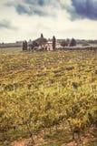 Tuscany fields Royalty Free Stock Image